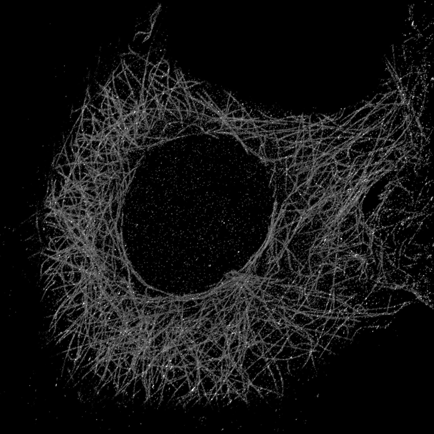 Image showing 2D Nanoscopy
